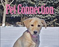 Pet Connection Fall 2015