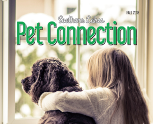 Pet Connection for Fall 2018